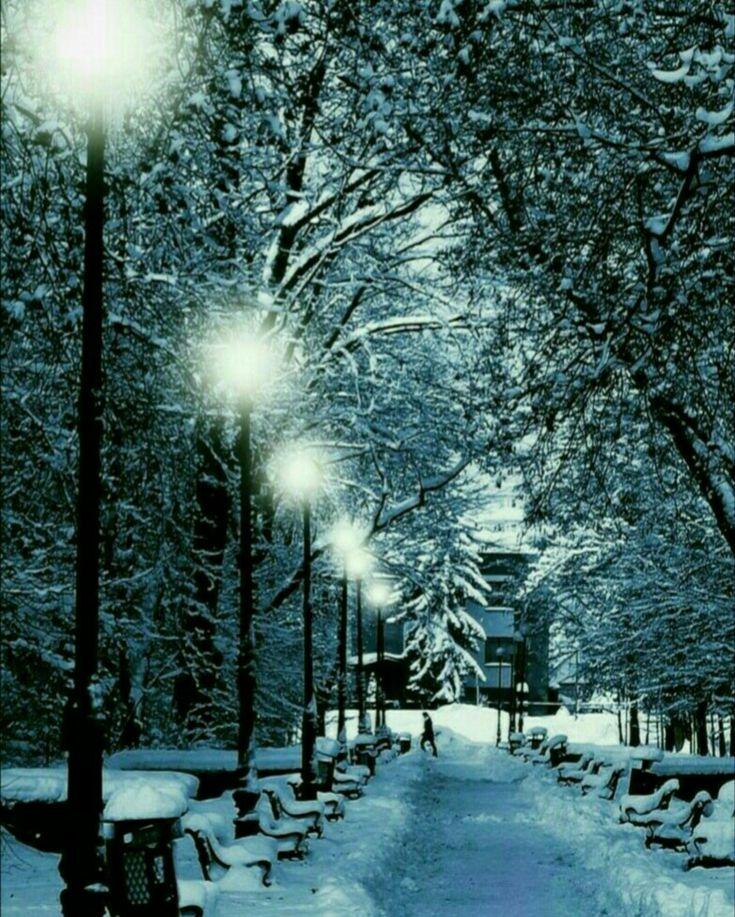 фото картинки на телефон зима предлагаем