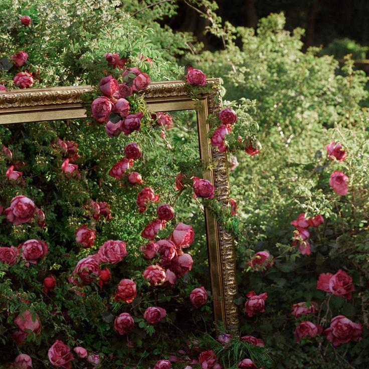 yves piaget roses garden secret gardensoutdoor ideasflower - Flower Garden Ideas With Roses