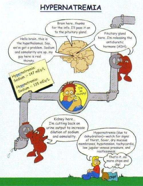 "thenursingschoolchronicles: ""• Fluid and Electrolytes"