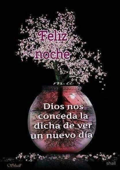 Te amo Cristo