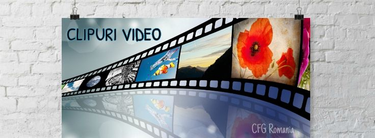 CLIPURI VIDEO Veniti in intampinarea clientilor dvs. cu Produse / Servicii expuse intr-o maniera eleganta, printr-un clip scurt, dar cu un impact puternic! Solicita acum detaliile de care ai nevoie!  office@exporeduceri.ro, 0734403752 http://exporeduceri.ro/spoturi-publicitare/ #spoturivideo #video #publicitate #promovare #design #clipvideo