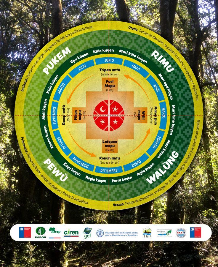 Calendario Mapuche. contratapa cuaderno para para proyecto Ta Ñi Mawiza de SIMEF e INFOR Valdivia.