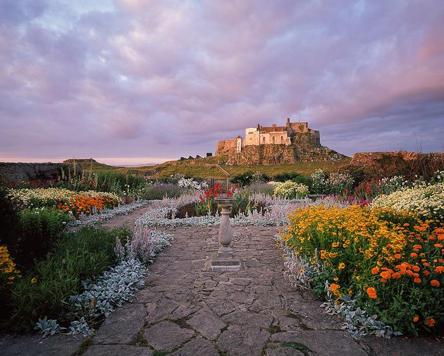 45 Best Images About 1 Gertrude Jekyll On Pinterest Gardens The Gentleman And Somerset