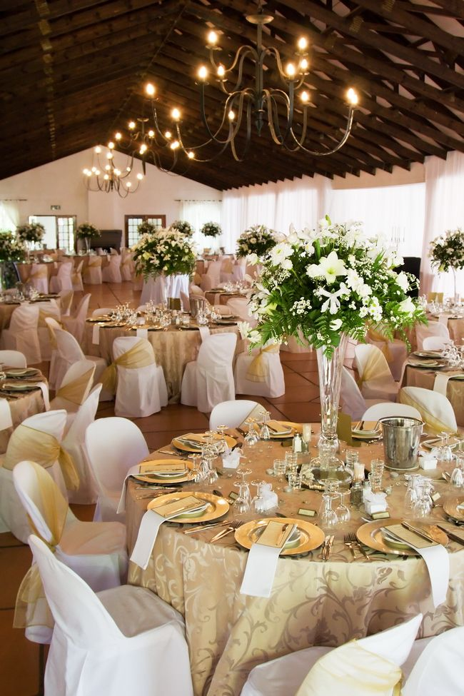 If I dochaircovers, I like the gold cloth and white chairs withe every other bow on the chair