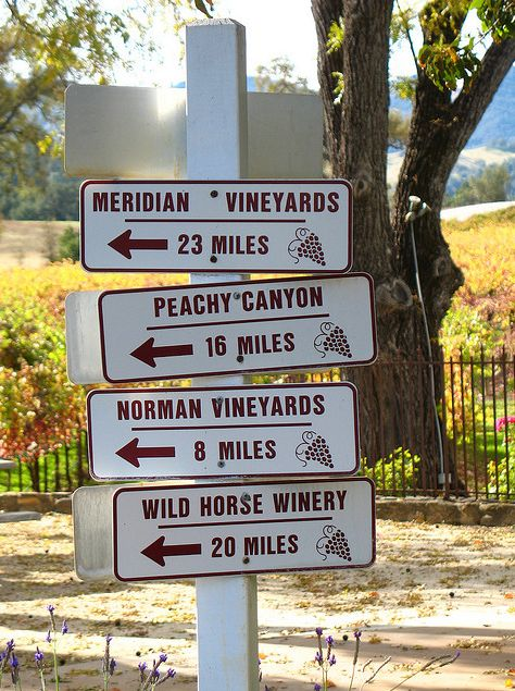 Paso Robles, California. Wine tasting!! Will make this a reality in July!!