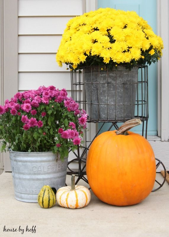 Decorating a Small Front Stoop for Fall - House by Hoff