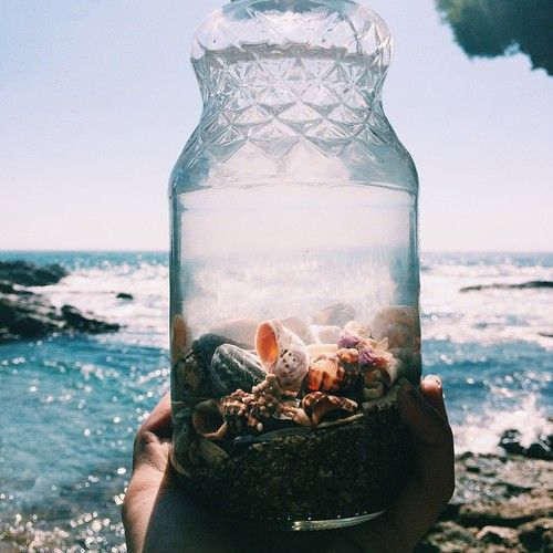 incandescently happy | shells in a jar on a beach.