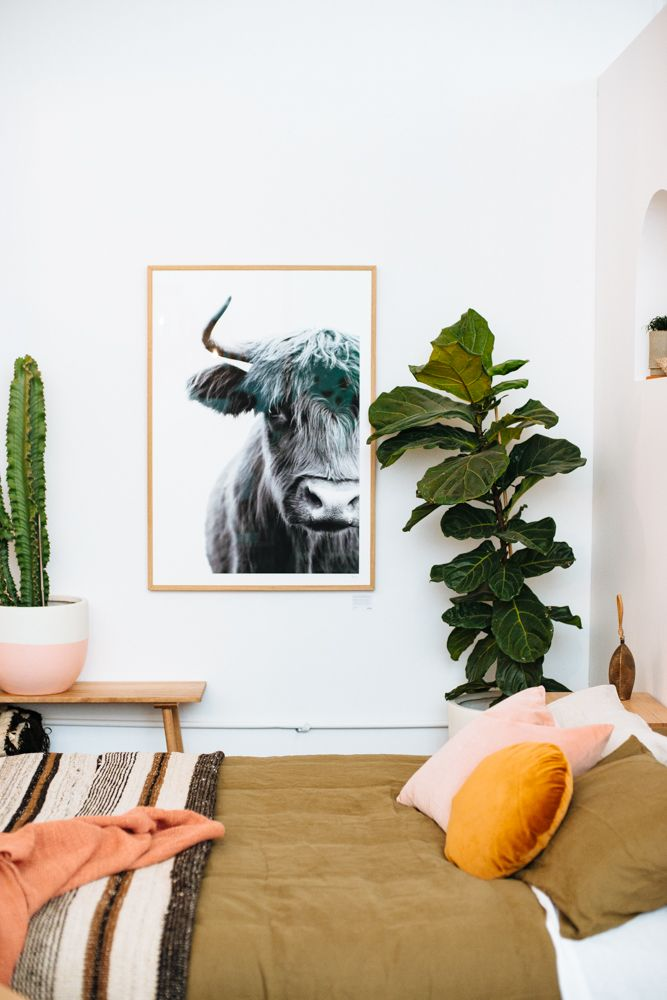 Pampa highlanders, fine art print, shot at our showroom with pop&scott by Bobby and Tide