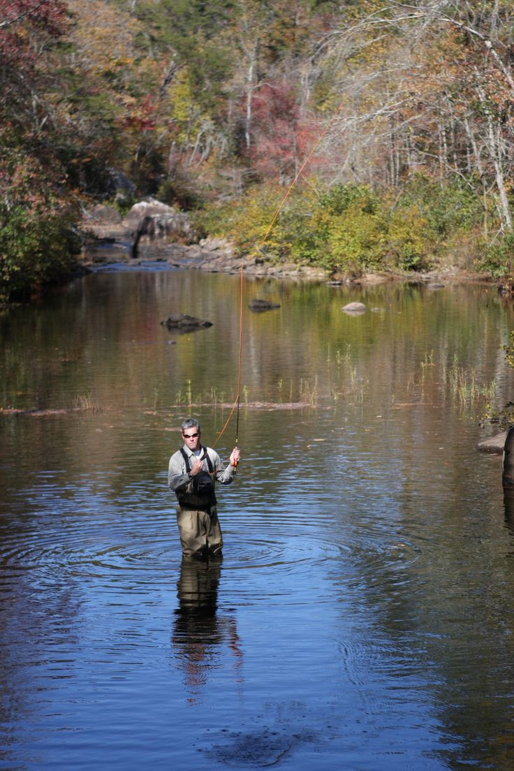 1000 images about fly fishing at desoto state park on for Trout fishing in alabama