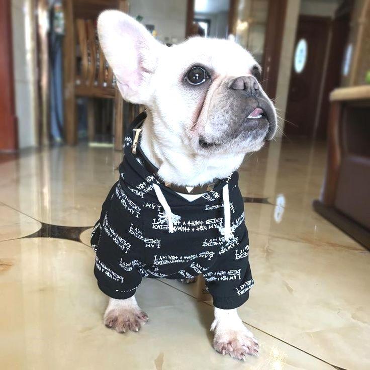 Pin By Thresa D Rabb On Frenchie French Bulldog Baby French