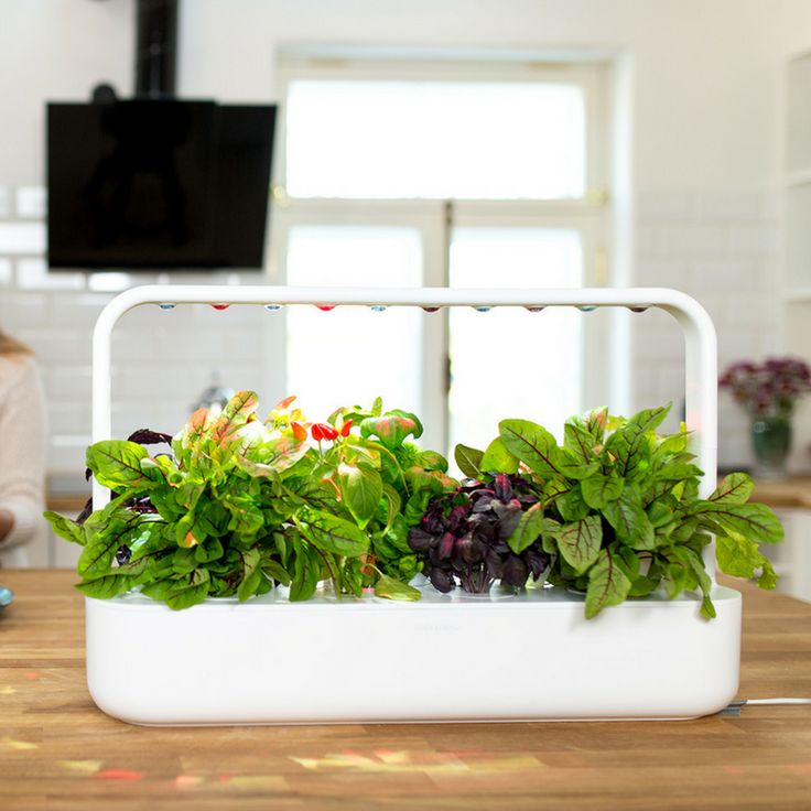 The easiest indoor gardening solution in the market-Click and Grow Smart Garden 9 Start kit. 1. Fill the Tank → 2. Power-up → 3. Enjoy. #smartsoil #nasatechnology #smartgadget #smarthome https://goo.gl/Vqh3wp