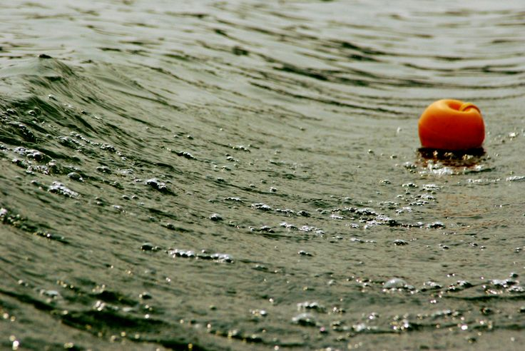 Floating by Tirtha Banerjee