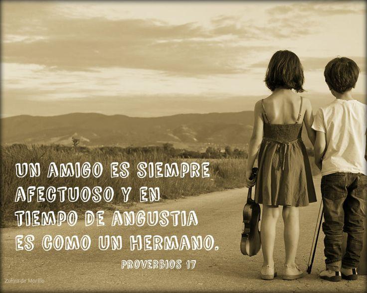 Proverbios de Salomón   Proverbios de salomon, Proverbios ...