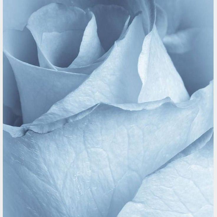 Hochzeitsmesse 01.Oktober 17 @kempinski_frankfurt @sioedam_couture #ysamakinocouture #sotteroandmidgley  #olvi's  SAVE THE DATE