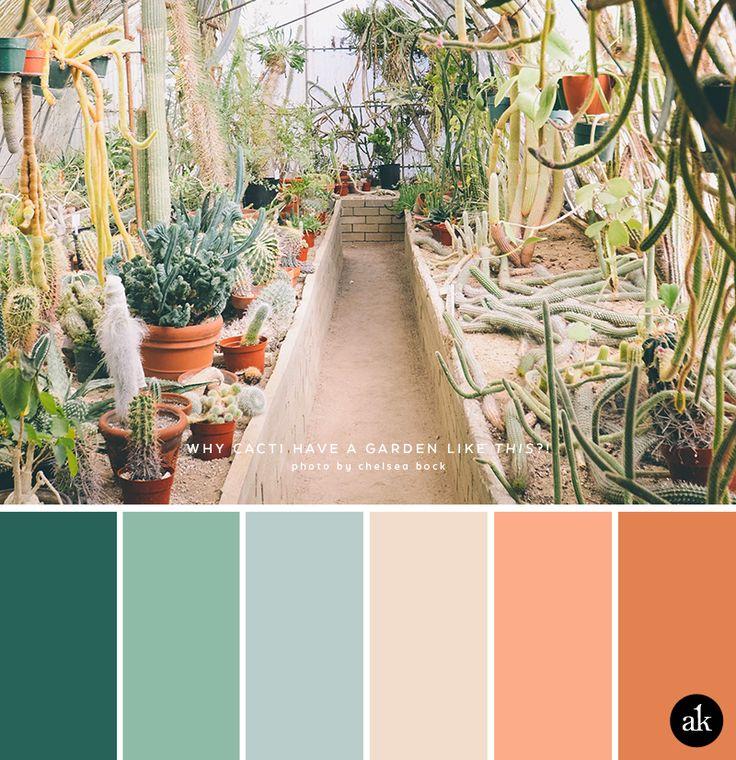 una paleta de colores de cactus jardín de inspiración // viridian verdes, corderos oreja verde, azul costero, arena del desierto, coral, terracota