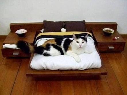 Resultado de imagem para camas para mascotas caseras