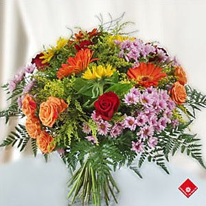 From France with Love featuring Daisy, Gerbera, Rose and Solidago