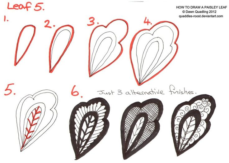 How to draw Paisley Leaf 05 by *Quaddles-Roost on deviantART