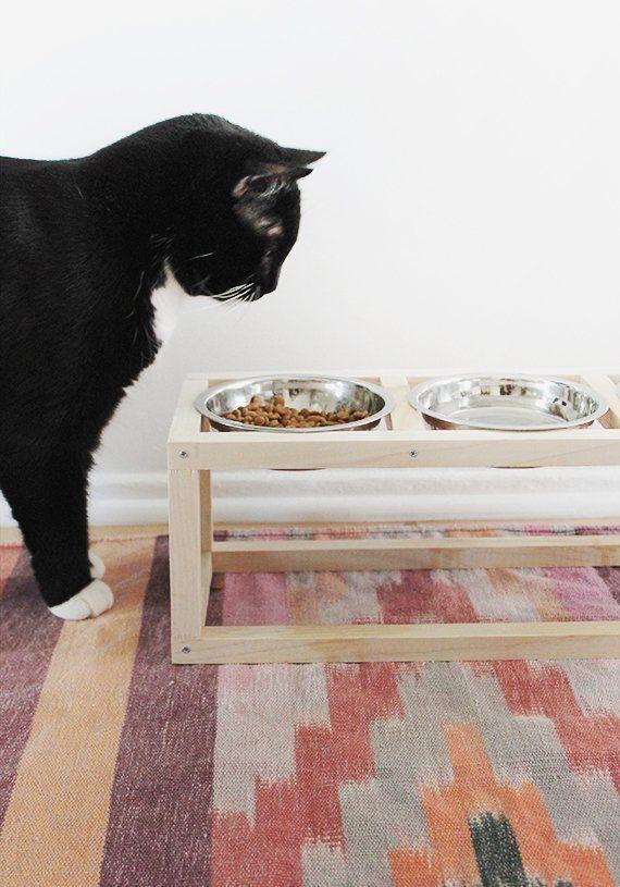 Plus de 25 id es g niales de la cat gorie maison pour chat - Pipi au lit comment nettoyer le matelas ...