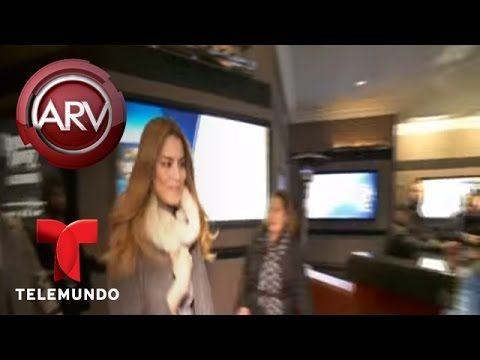 Perder fue mejor para Miss Colombia, según astrólogo | Al Rojo Vivo | Te...