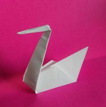Origami Swan - © Dana Hinders