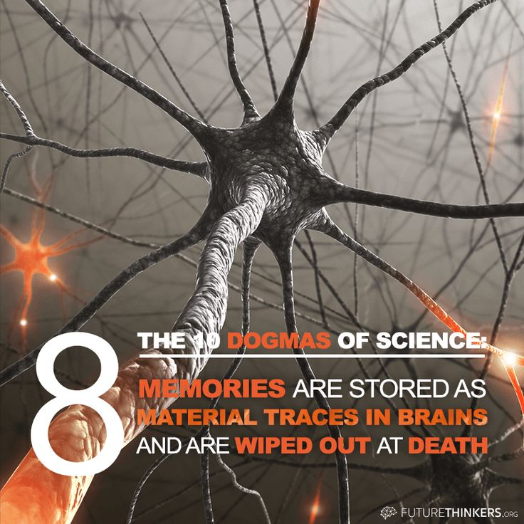 """10 Dogmas of Science: #8: """"Memories are stored as material traces in brains and are wiped out at death."""""""