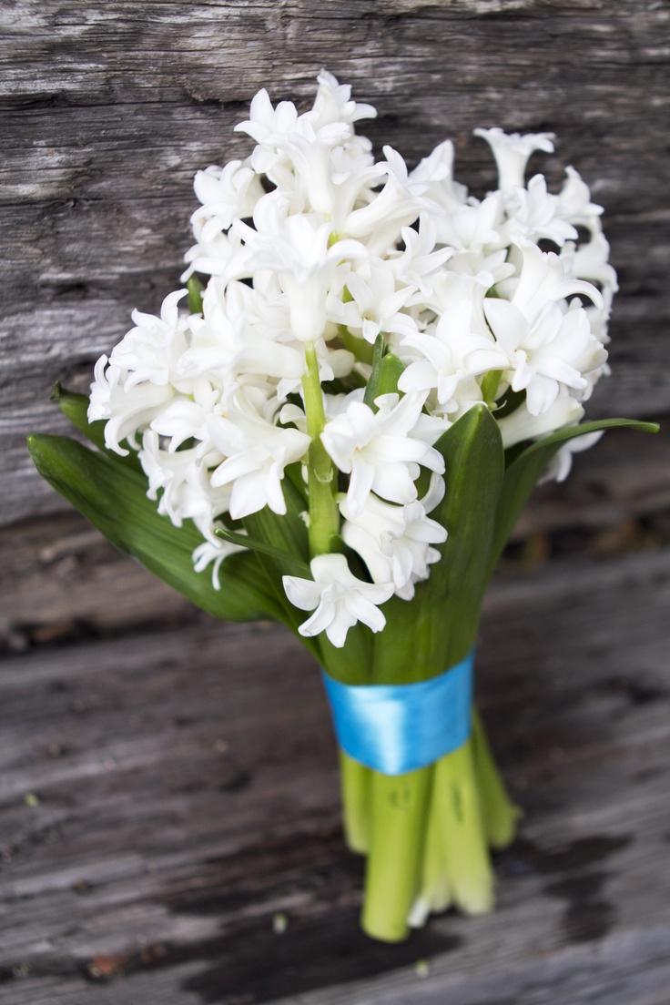 hyacinth wedding flowers | deweddingjpg.com