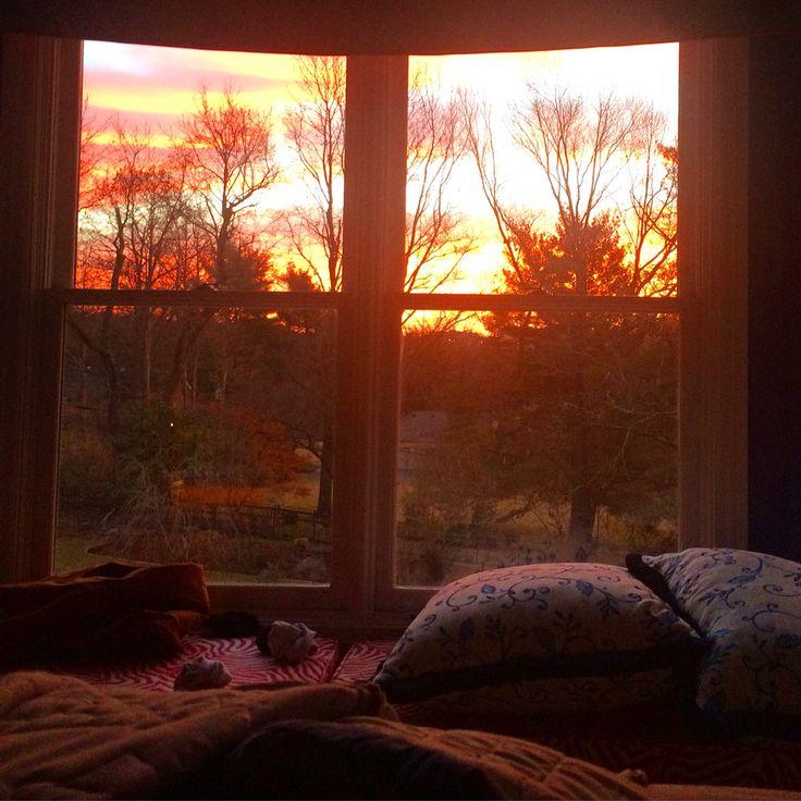 милая картинка окно над