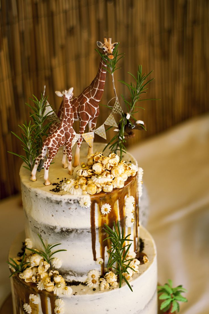 Safari zoo party, semi naked drip cake with caramel popcorn and rosemary