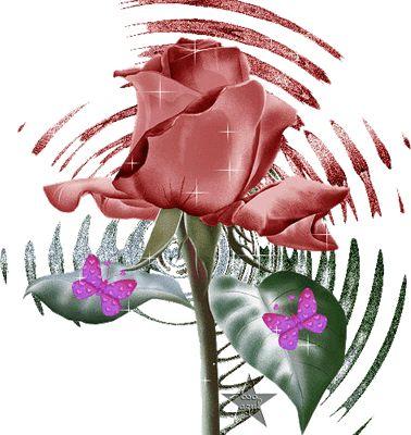 Rosas De Amor | Fotos De Flores Gratis Emoticones Con Movimiento Animaciones Con