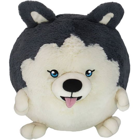 Surprise noon launch! It's the full-size Husky! Just in time to pull your sled through the ice and snow, all the way to the nearest convenience store for some hot cocoa! #squishable #plush #husky #puppy #alaska #yukon #moonmoon