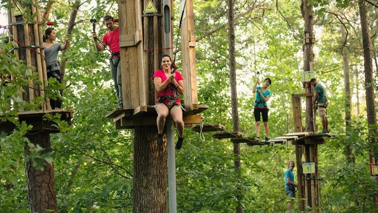 Go Ape Zip Line & Treetop Adventure Rockville, MD | Date ...