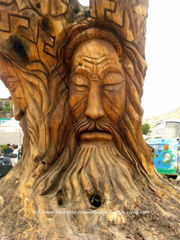 tree at Matala, Crete