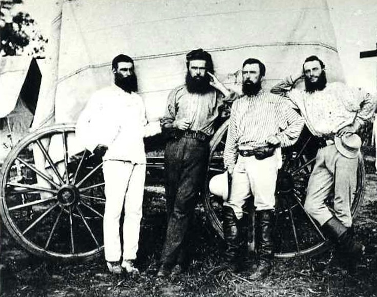 ☞ Bearded Bushrangers