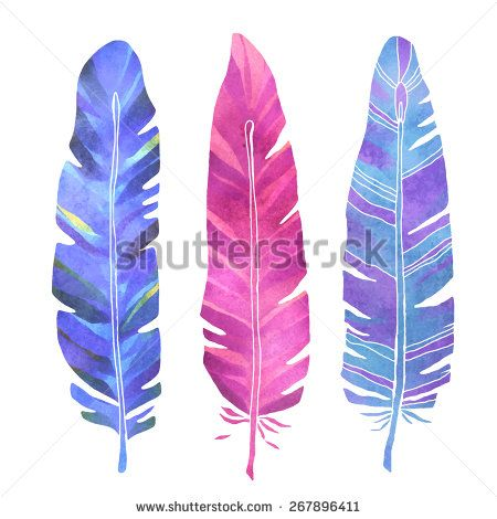 Hand painted watercolor bird feathers closeup isolated on white background colorful set. Art scrapbook elements, sketch, hand drawn