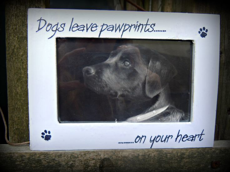 Dogs leave pawprints............ photo frame