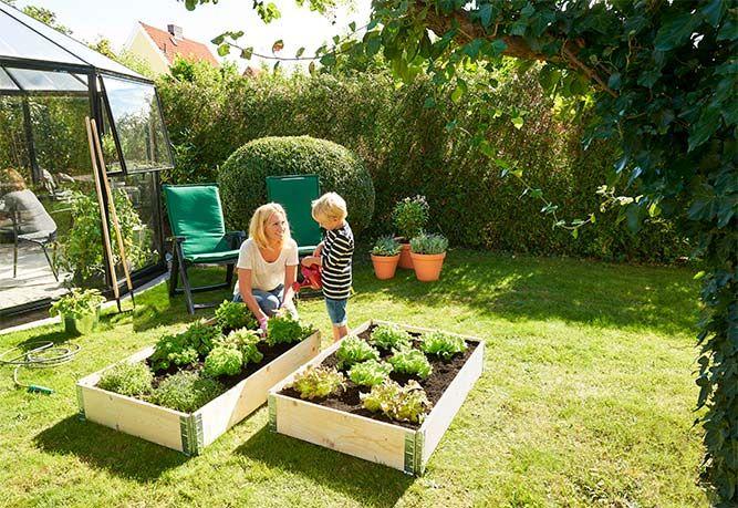 Plant og dyrk egen mat i en dyrkingskasse
