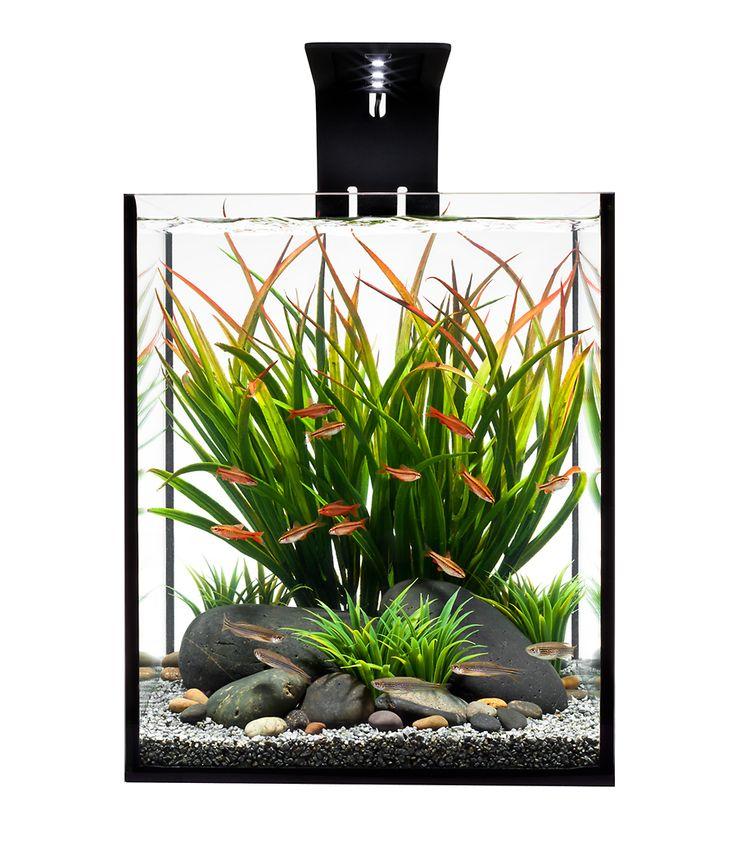1000+ Images About Garden: Aquascape On Pinterest