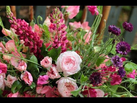 fresh flowers - fresh flowers wholesale - fresh cut flowers