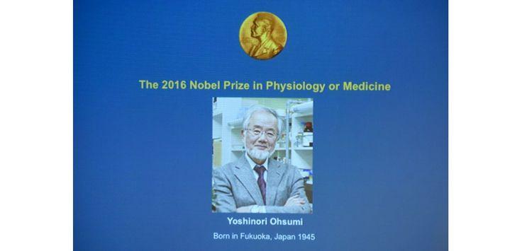 Une photo du Prix Nobel de médecine Yoshinori Ohsumi sur un écran à Stockholm le 3 octobre 2016 (c) Afp - Sciences et Avenir