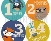 Monthly Baby Stickers Boy Monthly Baby Stickers Bodysuit Stickers Baby Month Stickers Monthly Stickers Baby Stickers Hipster Animals
