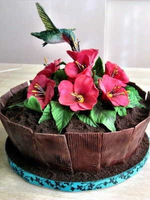 Hummingbird decorated cake.: Cakes Ideas, Decor Cakes, Planters Cakes, Amazing Cakes, Cakes Cupcakes, Flowers Pots Cakes, Hummingbirds Planters, Rice Krispie, Food Cakes