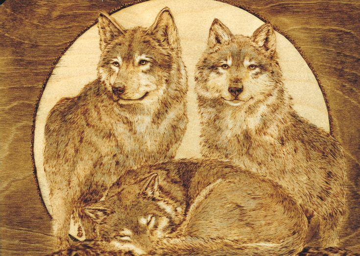 Wood Burning Wildlife Wildlife Wood Burning Stencils