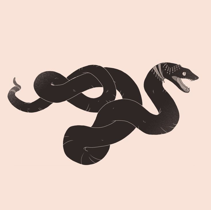 окружают картинки тумблер змеи помню завод
