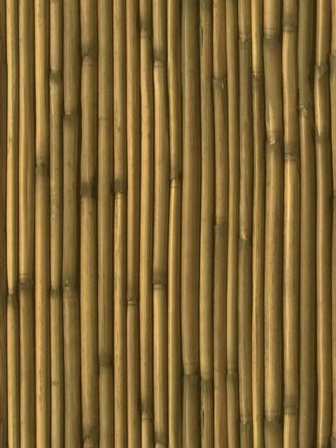 17 best ideas about bamboo wallpaper on pinterest for Bamboo wallpaper for walls