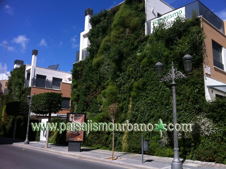 8 best images about jardin vertical paterna on pinterest for Jardines verticales construccion