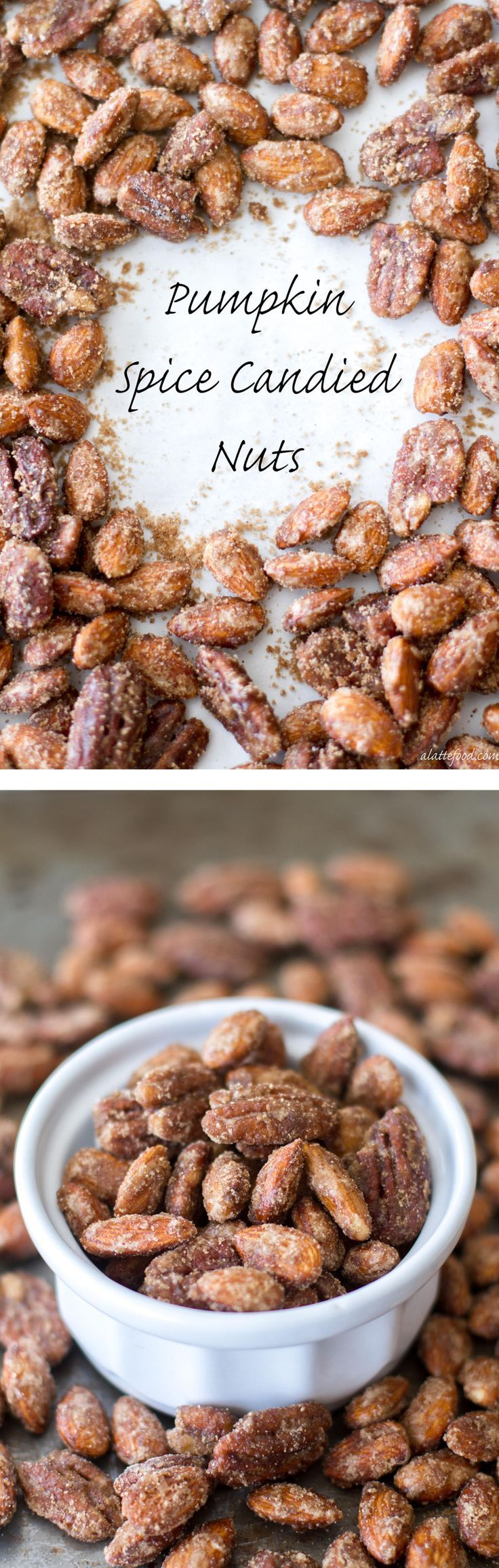 These sugared nuts are candied with a blend of pumpkin pie spice, white sugar, and brown sugar to make the most irresistible snack! | www.alattefood.com