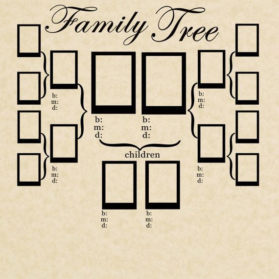 11 Best Family Tree Images On Pinterest Family Tree Chart Family