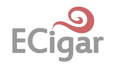 We have the Best tank atomizer services online to purchase the tank for cigarette which use used for smoking purpose. Get this product online easily at very lowest prices.this product is very easy to use and you will get best experiences with our products. If you want to purchase electronic cigarette go to the websites.  For more information visit at http://www.ecigar.in/.