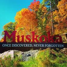 Image result for muskoka